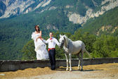 The bride and groom with a horse near the high mountains — Stock Photo