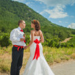 Bride and groom on background of vineyards — Stock Photo #23371164