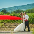 Bride and groom on background of vineyards — Stock Photo #23373324