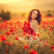 Bride in poppy field — Stock Photo #26400611