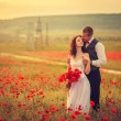 Bride and groom in poppy field — Stock Photo #26401373