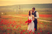 The bride and groom in a poppy field — Stock Photo