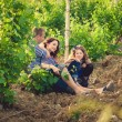 Family in the striped shirt in the vineyard — Stock fotografie
