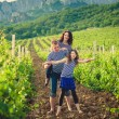 Family in the striped shirt in the vineyard — Stok fotoğraf