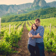Couple in striped shirts in the vineyard — ストック写真