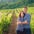 Couple in striped shirts in the vineyard — Foto Stock
