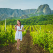 Beautiful girl in summer vineyard — Stock Photo #27266999