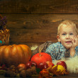 Stock Photo: A boy in autumn interior