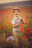 A boy in the field of poppies — Stock Photo