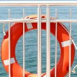 Life buoy on board — Photo #13177367