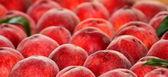 свежие спелые персики. — Стоковое фото