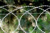 剃刀栅栏铁丝网 — 图库照片