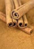 Palitos de canela en tierra canela — Foto de Stock