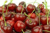 Fresh cherries on white background — Stockfoto