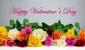 "Colorful roses and "" Happy Valentine's Day "" text — Stock Photo"