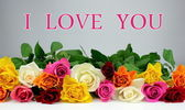 "Colorful roses and "" I LOVE YOU "" text — Stock fotografie"