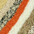 Various colorful dried legumes  — Photo