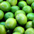 Lime fruits — Photo #15656865