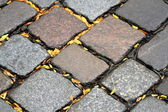 Brown and grey road paving stones — Stock Photo