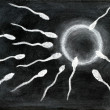 Fertilization of sperm and egg — Stock Photo #16910503