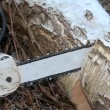 Chainsaw — Stock Photo #20720925
