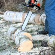 Chainsaw — Stock Photo #20720949