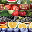 Fruit banners — Stock Photo