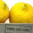 Fresh organic lemon  — Stock Photo