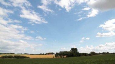 Campos verdes y nubes moviéndose rápidas — Vídeo de Stock