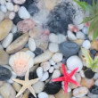 Fountain plash on pebble stones with starfish and seashell — Stock Video