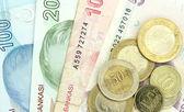 Türk banknot ve madeni paralar — Stok fotoğraf