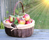 Fresh organic red apples in a basket — Stockfoto