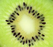 Kiwis délicieux — Photo