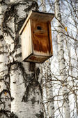 Birdhouse for birds. House for the birds on the tree — Stock Photo