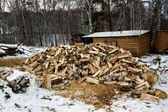 Chopped wood. Preparing for the winter season. — Stock Photo