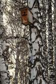 Birdhouse for birds. House for the birds on the tree — Stock Photo