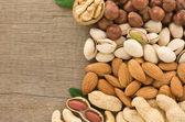 Set of nuts fruit on wood background — Stock Photo