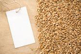 Wheat grain on wood texture — Stock Photo