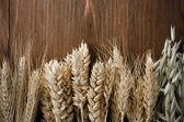 Orejas de cereales en la madera — Foto de Stock
