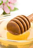 Miel en pot — Photo