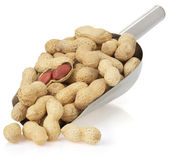Nuts peanuts isolated on white — Stock Photo