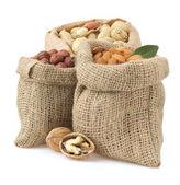 Conjunto de lnuts isolado no branco — Foto Stock