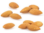 Almond nut on white — Stock Photo