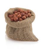 лещинных орехов в мешке — Стоковое фото
