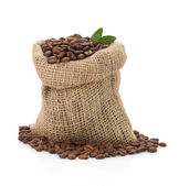 Coffee beans on white background — Stock Photo