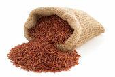 Rice in sack bag — Stock Photo