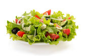 Salad in plate — Stock Photo