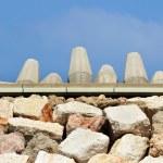 Постер, плакат: Travel Photos of Israel Ashkelon