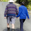 Elderly couple holds hand while walking — Stock Photo