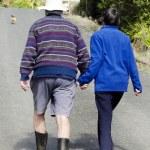 Elderly couple holds hand while walking — Stock Photo #13193652